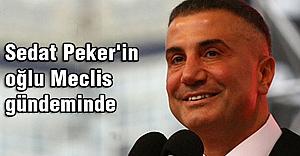 Sedat Peker'in oğlu Meclis gündeminde