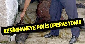 Kesimhaneye Polis Operasyonu!