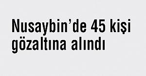 Nusaybin'de 45 kişi gözaltına alındı