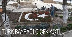 Türk Bayrağı Çiçek Açtı