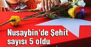 Nusaybin'de  Şehit sayısı 5 oldu