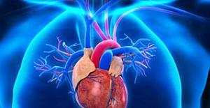 Aort damarı neden ve nasıl yırtılır?