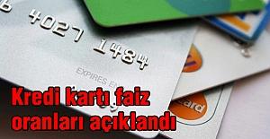 Kredi kartı faiz oranlarını açıklandı