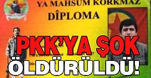 PKK'ya Şok: O PKK'nın Sorumlusu Öldürüldü