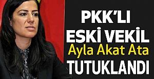 BDP'li Eski vekil örgüt üyeliğinden tutuklandı