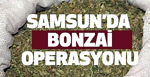 Samsun'da Bonzai Operasyonu