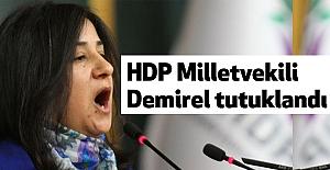 HDP Milletvekili tutuklandı