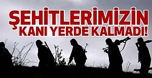 Kanları Yerde Kalmadı: 7 PKK'lı Öldürüldü
