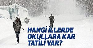 Türkiye'de Hangi İllerde Kar Tatili Var?