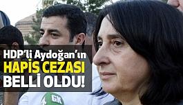 HDP'li Nursel Aydoğan'ın hapis cezası belli oldu