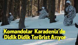 Komandolar Didik Didik Terörist Arıyorlar