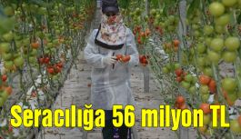 Seracılığa 56 milyon TL