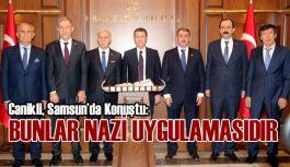 Başbakan Yardımcısı Canikli: Bunlar Faşist Uygulamalardır