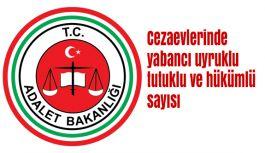 Cezaevlerinde yabancı uyruklu tutuklu ve hükümlü sayısı