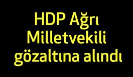 HDP Ağrı Milletvekili gözaltına alındı