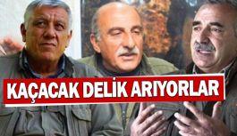 PKK Elebaşları Kaçacak Delik Arıyor!