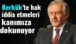 """""""Türkmen kenti Kerkük'e paçavranın asılması; tam anlamıyla fecaattır"""""""
