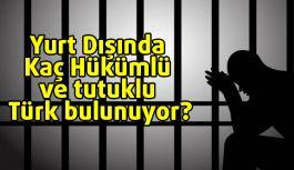 Yurt Dışında Kaç Hükümlü ve Tutuklu Türk bulunuyor?
