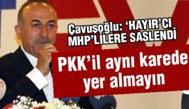 Çavuşoğlu 'Hayır'cı MHP'lilere seslendi