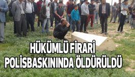 Çeşitli suçlardan aranan firari öldürüldü