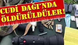 Cudi Dağı'nda 4 terörist öldürüldü