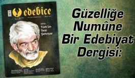 Güzelliğe Numûne Bir Edebiyat Dergisi: EDEBÎCE