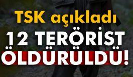 Türk Silahlı Kuvvetleri 12 teröristi etkisiz hale getirdi