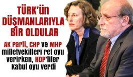 Türkiye'yi denetim sürecine sokacak tasarıya HDP'li milletvekilleri kabul oyu verdi