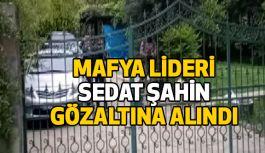 """Mafya Lideri Sedat Şahin""""e Ani Baskın: Yakalandı!"""