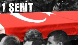 Osmaniye'de Terör operasyonu: 1 şehit
