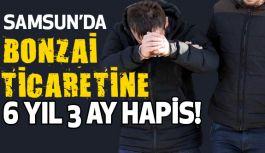 Samsun'da bonzai satışına 6 yıl 3 ay hapis