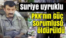 """Suriye Uyruklu """"PKK Güç Sorumlusu"""" Ölü Ele Geçirildi"""