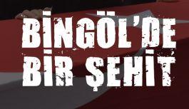 Acı Haber: Bingöl'de Bir Şehidimiz Var!