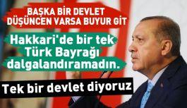 Erdoğan: Sen bu ülkede tek millet değil de çok millet mi istiyorsun?