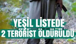 Yeşil Listede Olan 2 Terörist Öldürüldü