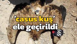 Sınırda 'Casus Kuş'  Vurularak Ele Geçirildi