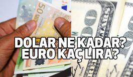Dolar ve Euro Kaç Lira?