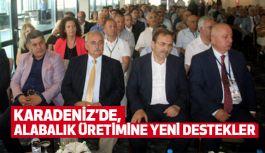 Karadeniz'de Büyük Alabalık Yetiştiriciliği Çalıştayı