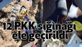Mardin'de PKK Sığınağı Ele geçirildi
