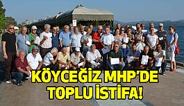 Muğla Köyceğiz MHP'de toplu istifa