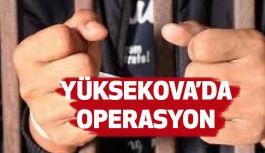 Yüksekova'da Operasyon; 13 kişi gözaltına alındı