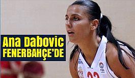 Dabovic, Fenerbahçe'de