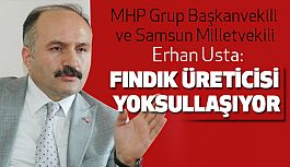 Erhan Usta; Fındık Sorununu Türkiye Büyük Millet Meclisi'ne Taşıyor