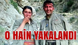 Mardin'de PKK'ya Büyük Darbe!