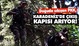 PKK Karadeniz'de Çıkış Kapısı Arıyor...