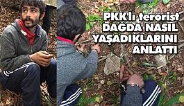 PKK'lı terörist, Dağlarda Nasıl Yaşadıklarını Anlattı