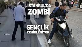 İstanbul'da bonzai manzaraları