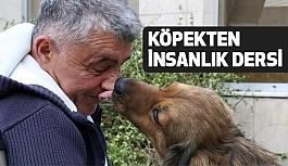 Köpekten İnsanlık Dersi