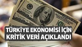 Türkiye Ekonomisi İçin Kritik Veri Açıklandı