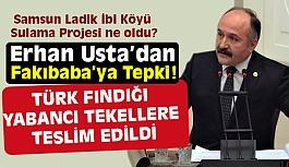 Erhan Usta; Türk Fındığı Yabancı Tekellere Teslim Edilmiştir